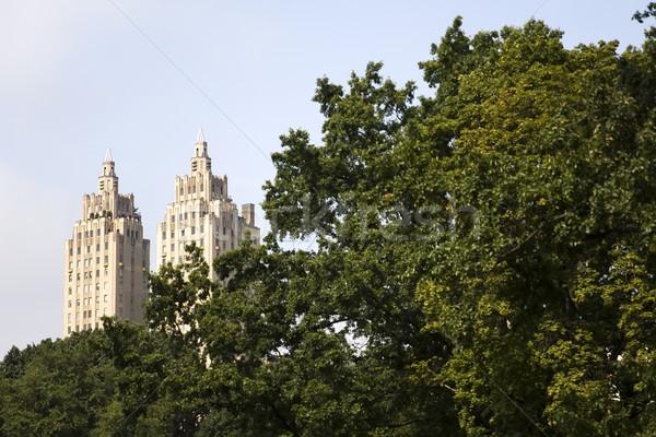 セントラル·パーク ニューヨーク 米国 ツリー 建物 自然 ストックフォト © boggy