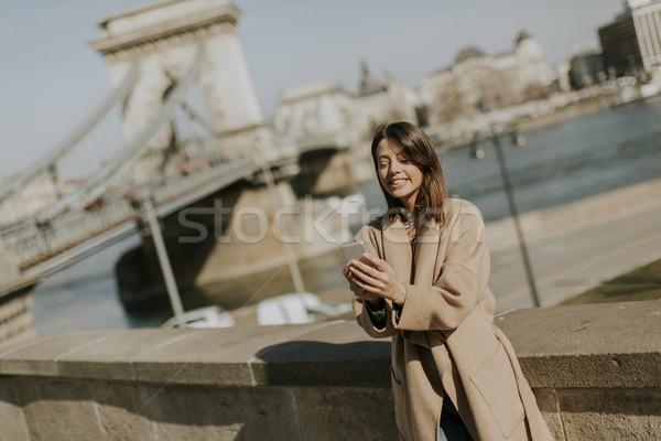 мобильного телефона цепь моста Будапешт Сток-фото © boggy