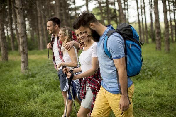 Groep jongeren wandelen berg voorjaar dag Stockfoto © boggy