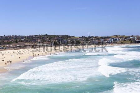 Strand Sydney Australië water Blauw reizen Stockfoto © boggy
