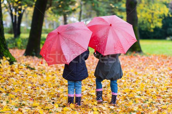 Kislányok sétál piros esernyő ősz park Stock fotó © boggy