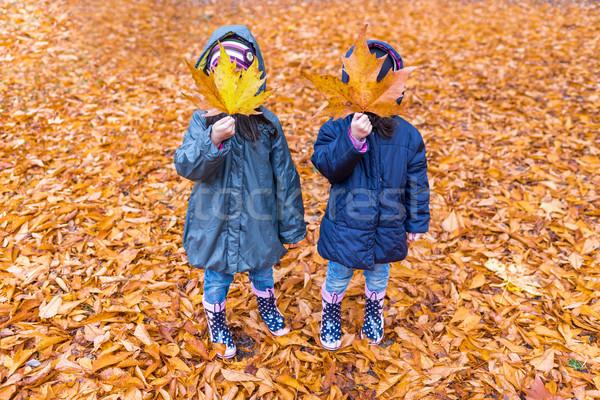 Kislányok rejtett arc juharlevél ősz park Stock fotó © boggy