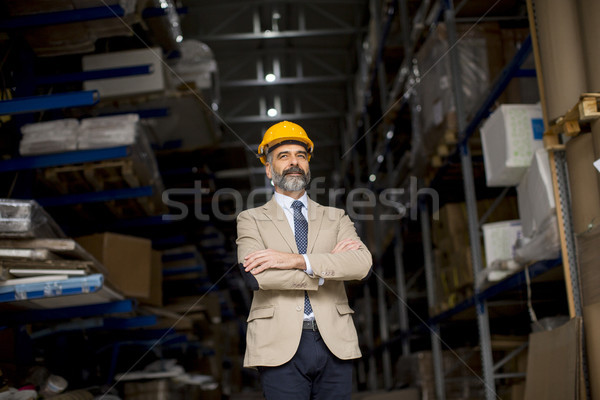 Portrait of senior businessman in suit with helmet in a warehous Stock photo © boggy