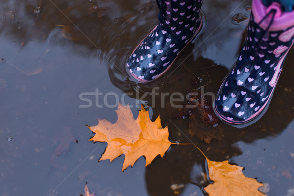 Pair of rubber boots Stock photo © boggy