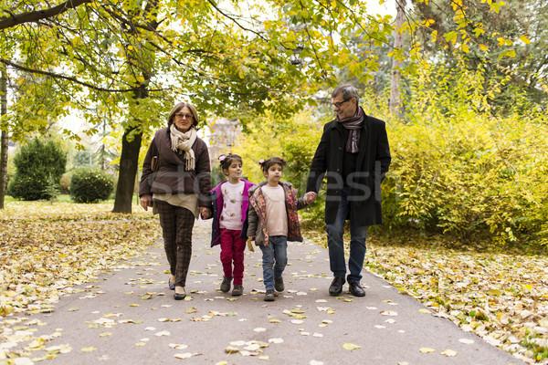Avós netos outono parque feliz caminhada Foto stock © boggy