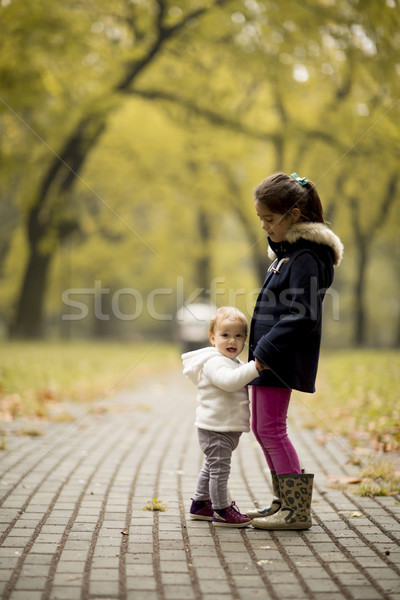 Two little girls at autumn park Stock photo © boggy