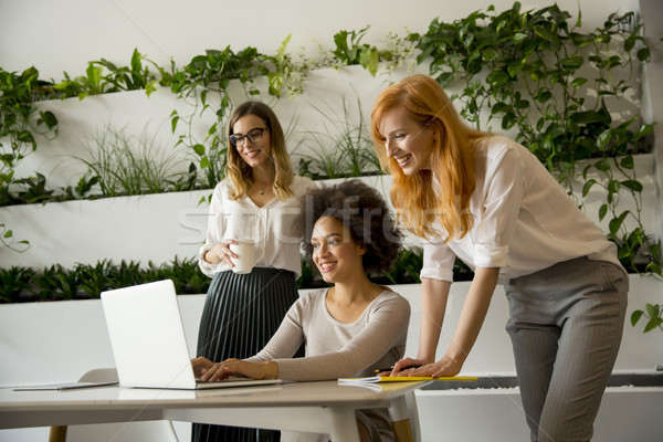 Stock photo: Cheerful professional multiracial women working in modern office