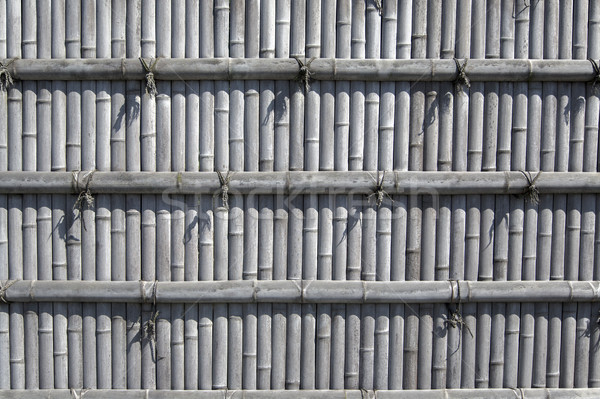 Detail from the bamboo fence Stock photo © boggy