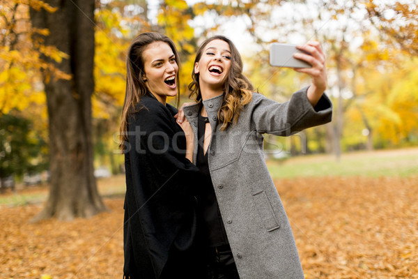 Two young women taking selfie with mobile phone in the autumn pa Stock photo © boggy