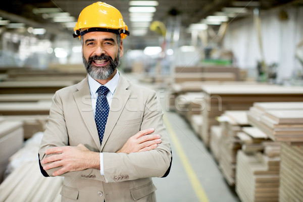 Middle-aged businessman in factory Stock photo © boggy