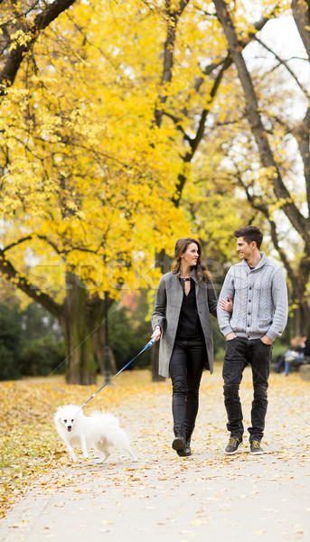 Paar hond lopen park vrouw gelukkig Stockfoto © boggy
