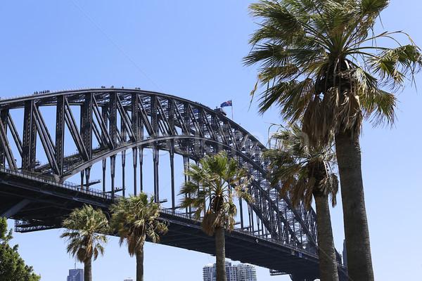 Sydney haven brug Australië zee Stockfoto © boggy