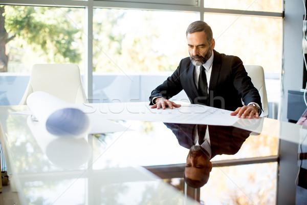 Bonito empresário moderno escritório documentos Foto stock © boggy