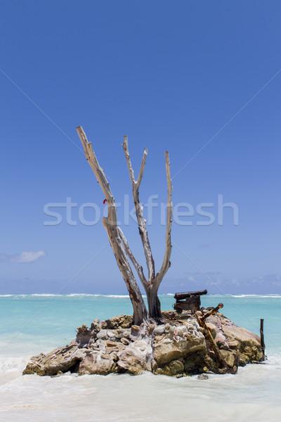 Caribbean sea Stock photo © boggy
