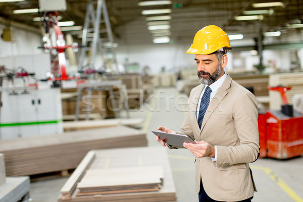 Handsome mature engineer in the factory Stock photo © boggy