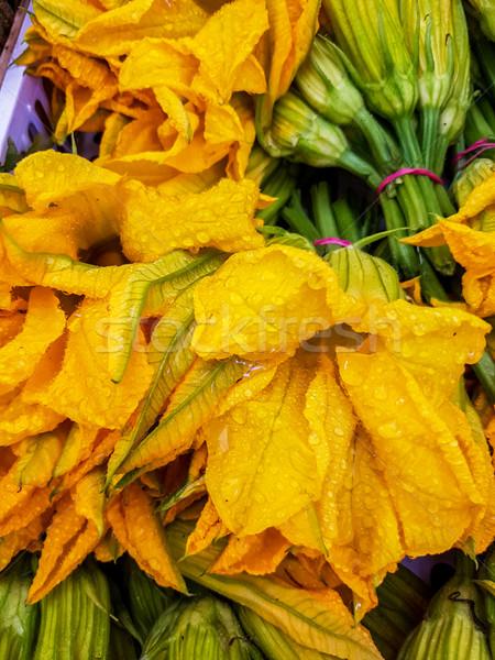 Cukinia kwiat lata warzyw świeże Zdjęcia stock © boggy