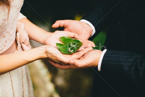 Ifjú pár tart jegygyűrűk kezek zöld levél esküvő Stock fotó © boggy