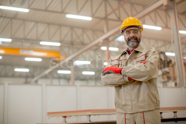 Ingenieur fabriek portret industrie pak Stockfoto © boggy