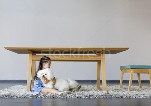 Little girl jogar branco poodle quarto cão Foto stock © boggy