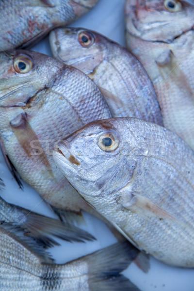 Fresh fish Stock photo © boggy