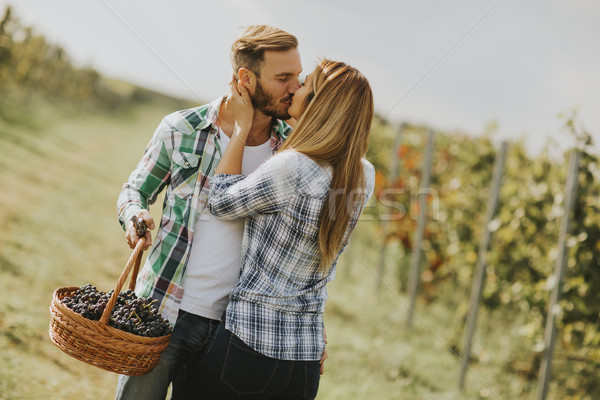 Young couple kissing in a vineyard Stock photo © boggy