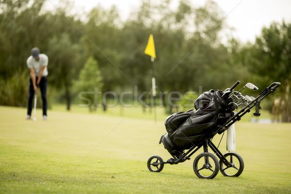 Homem jogar golfe campo de golfe natureza jogar Foto stock © boggy