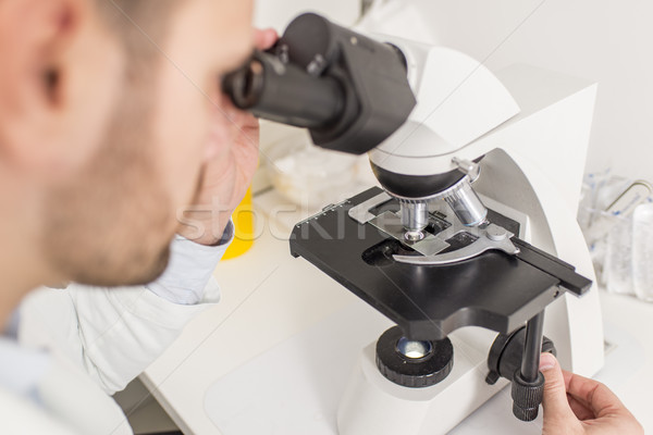 Doctor looks through the microscope Stock photo © boggy