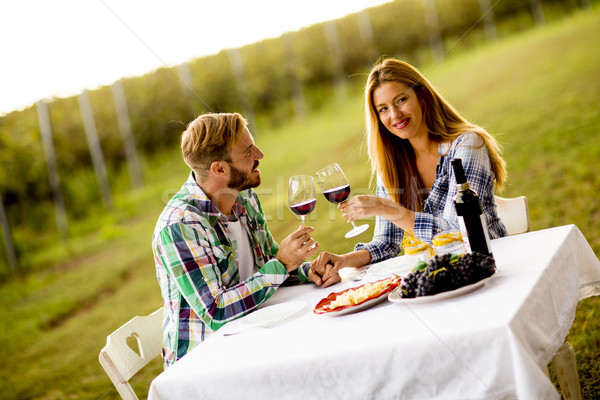 Zdjęcia stock: Tabeli · winnicy · posiedzenia · pitnej · wina