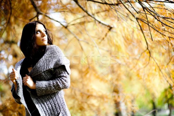 Photo stock: Jeune · femme · automne · forêt · femmes · sexy · heureux