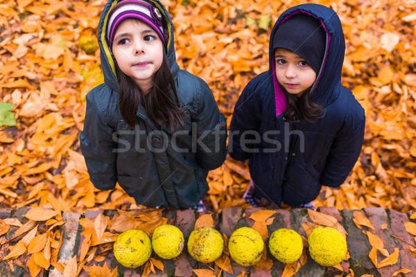 Kislányok ősz park kettő természet lányok Stock fotó © boggy