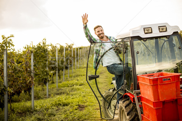 Handsome young man working in the vineyard Stock photo © boggy