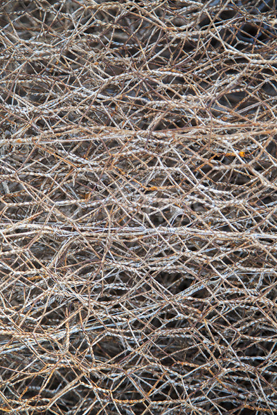 Rusty wire Stock photo © boggy
