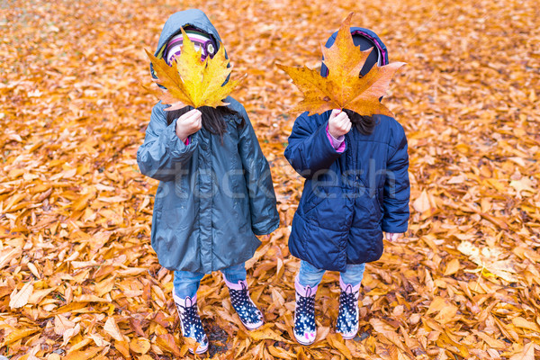 Little girls with a hidden face with a maple leaf in an autumn p Stock photo © boggy