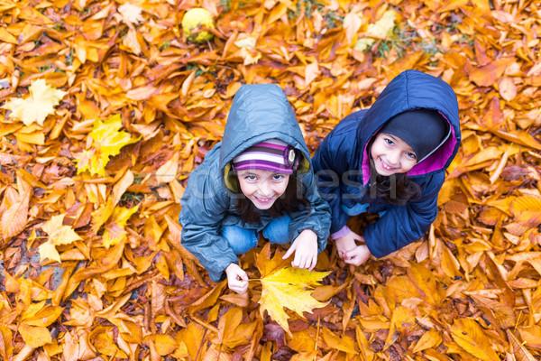 Kislányok ősz narancs levelek park felső Stock fotó © boggy