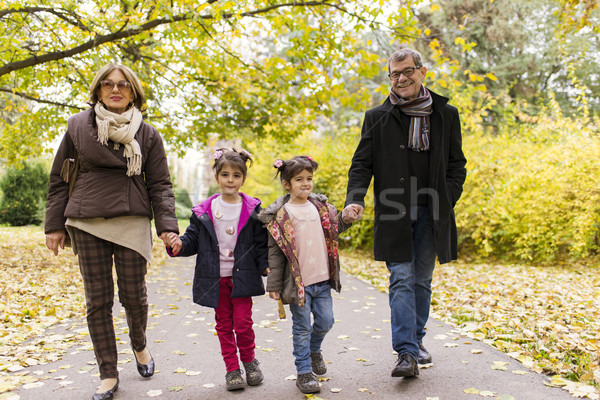 Grandparents with grandchildren in autumn park Stock photo © boggy