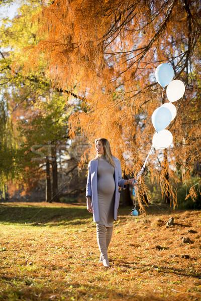 Foto stock: Jovem · mulher · grávida · balões · outono · parque · bastante