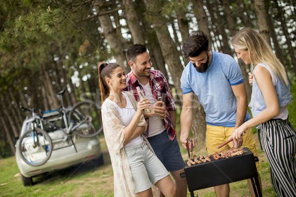 Młodych ludzi grill strony parku grupy Zdjęcia stock © boggy