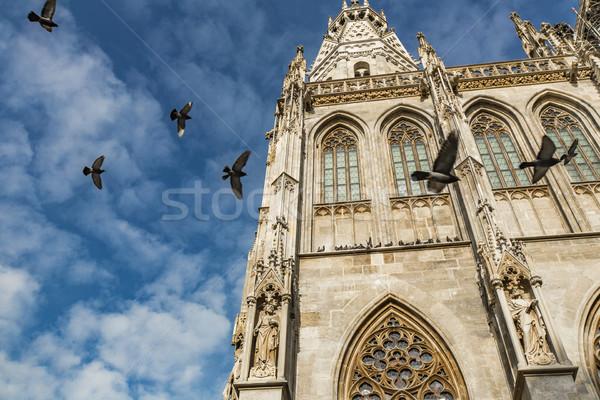 Dettaglio cattedrale Vienna Austria costruzione chiesa Foto d'archivio © boggy