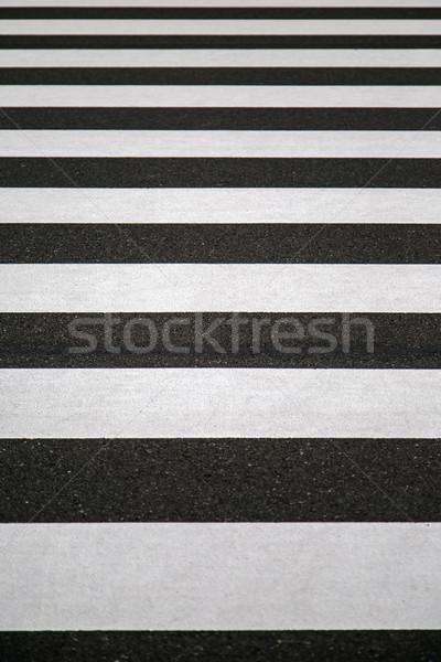 Zebra közelkép kilátás város utca városi Stock fotó © boggy