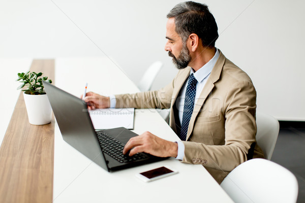 Handsome middle-aged businessman working on laptop in office Stock photo © boggy