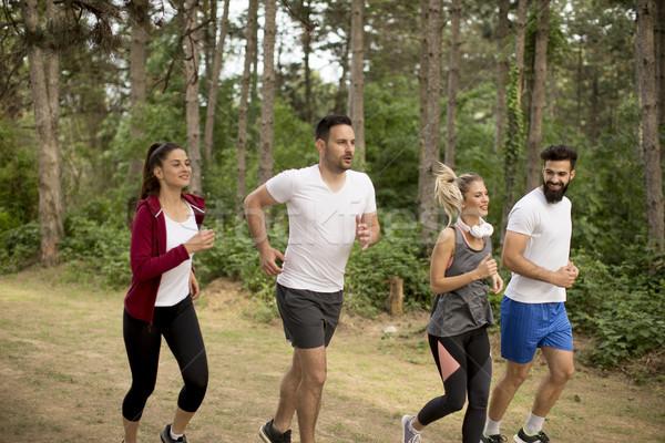 Jongeren lopen marathon bos groep natuur Stockfoto © boggy