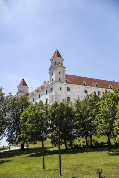 Bratislava castel Slovacia vedere constructii peisaj Imagine de stoc © boggy