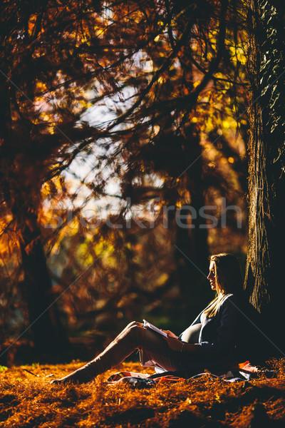 Stockfoto: Jonge · zwangere · vrouw · vergadering · boom · najaar · park
