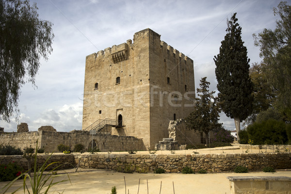 Kolossi castle on Cyprus Stock photo © boggy