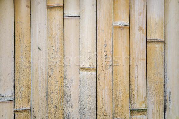 Bambusa ogrodzenia widoku szczegół ściany Zdjęcia stock © boggy