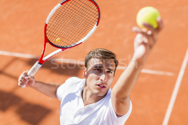 Stockfoto: Jonge · man · spelen · tennis · man · sport · jonge