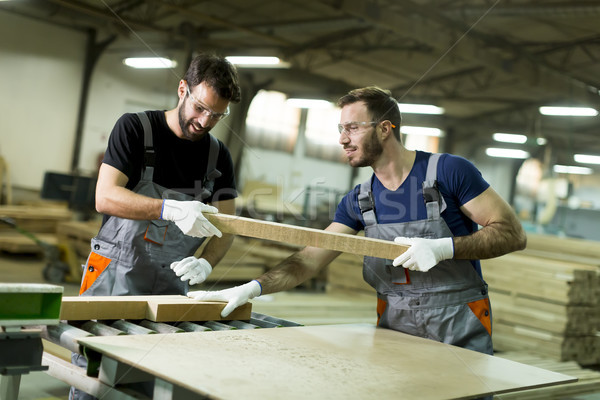Young men in a furniture factory Stock photo © boggy