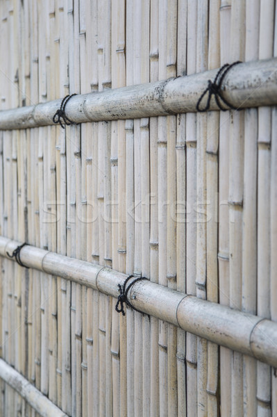 Bamboo fence Stock photo © boggy