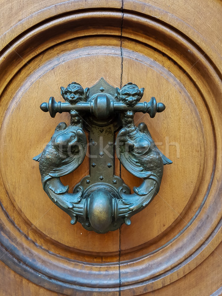 Door knocker Stock photo © boggy