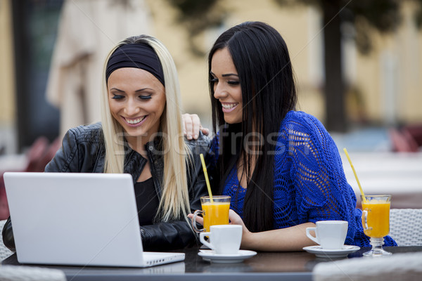девочек ноутбука бизнеса лице ресторан группа Сток-фото © boggy